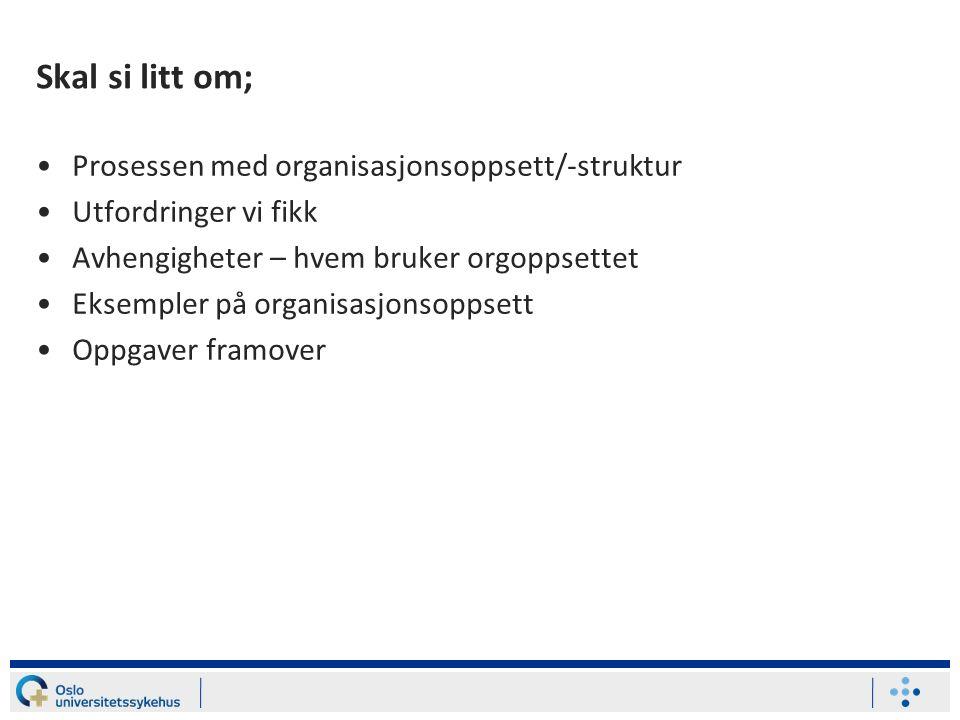 Skal si litt om; Prosessen med organisasjonsoppsett/-struktur Utfordringer vi fikk Avhengigheter – hvem bruker orgoppsettet Eksempler på organisasjonsoppsett Oppgaver framover