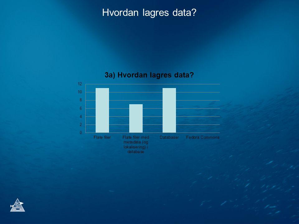 Hvordan lagres data?