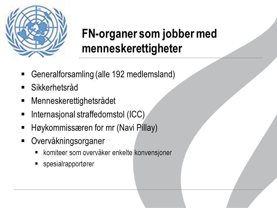 FN-organer som jobber med menneskerettigheter  Generalforsamling (alle 192 medlemsland)  Sikkerhetsråd  Menneskerettighetsrådet  Internasjonal straffedomstol (ICC)  Høykommissæren for mr (Navi Pillay)  Overvåkningsorganer  komiteer som overvåker enkelte konvensjoner  spesialrapportører