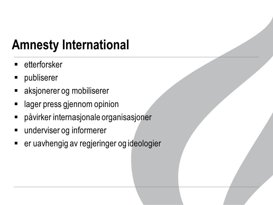 Amnesty International  etterforsker  publiserer  aksjonerer og mobiliserer  lager press gjennom opinion  påvirker internasjonale organisasjoner  underviser og informerer  er uavhengig av regjeringer og ideologier