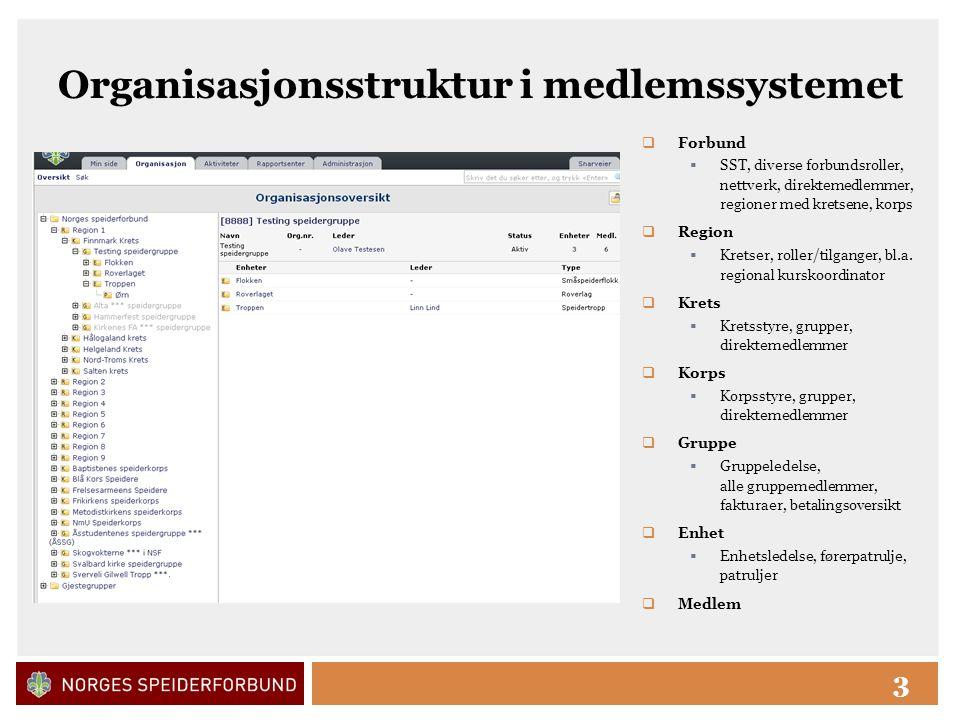 Click to edit Master title style 3 Organisasjonsstruktur i medlemssystemet  Forbund  SST, diverse forbundsroller, nettverk, direktemedlemmer, regioner med kretsene, korps  Region  Kretser, roller/tilganger, bl.a.