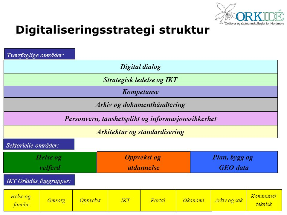Digitaliseringsstrategi struktur Tverrfaglige områder: Digital dialog Strategisk ledelse og IKT Kompetanse Arkiv og dokumenthåndtering Personvern, tau