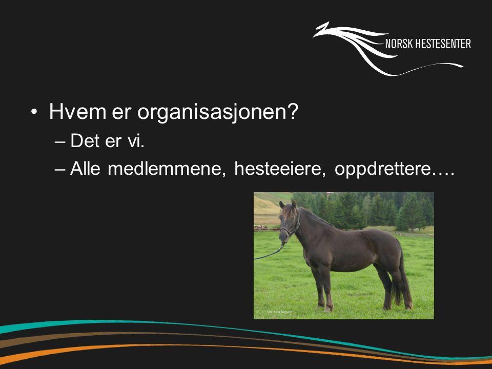 Hvem er organisasjonen –Det er vi. –Alle medlemmene, hesteeiere, oppdrettere….