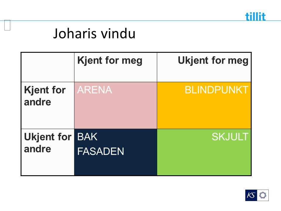 JOHARIS VINDU Kjent for megUkjent for meg Kjent for andre ARENABLINDPUNKT Ukjent for andre BAK FASADEN SKJULT Luft, J.; Ingham, H.