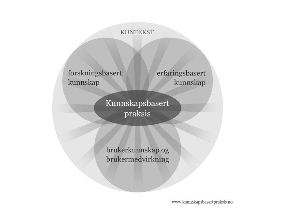 Forskningsbasert kunnskap sentral i kunnskapsbasert medisin