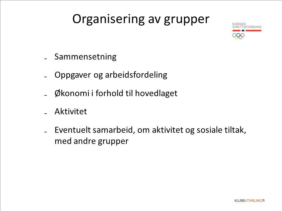 Organisering av grupper ₋Sammensetning ₋Oppgaver og arbeidsfordeling ₋Økonomi i forhold til hovedlaget ₋Aktivitet ₋Eventuelt samarbeid, om aktivitet og sosiale tiltak, med andre grupper