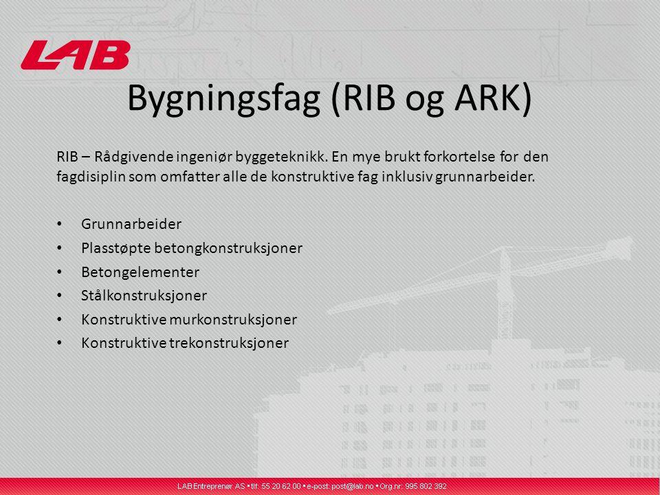 Bygningsfag (RIB og ARK) RIB – Rådgivende ingeniør byggeteknikk. En mye brukt forkortelse for den fagdisiplin som omfatter alle de konstruktive fag in