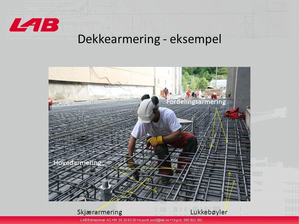 Dekkearmering - eksempel SkjærarmeringLukkebøyler Hovedarmering Fordelingsarmering