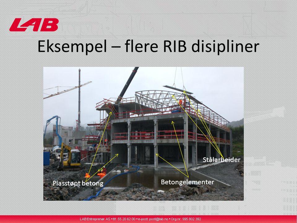 Eksempel – flere RIB disipliner Plasstøpt betong Betongelementer Stålarbeider
