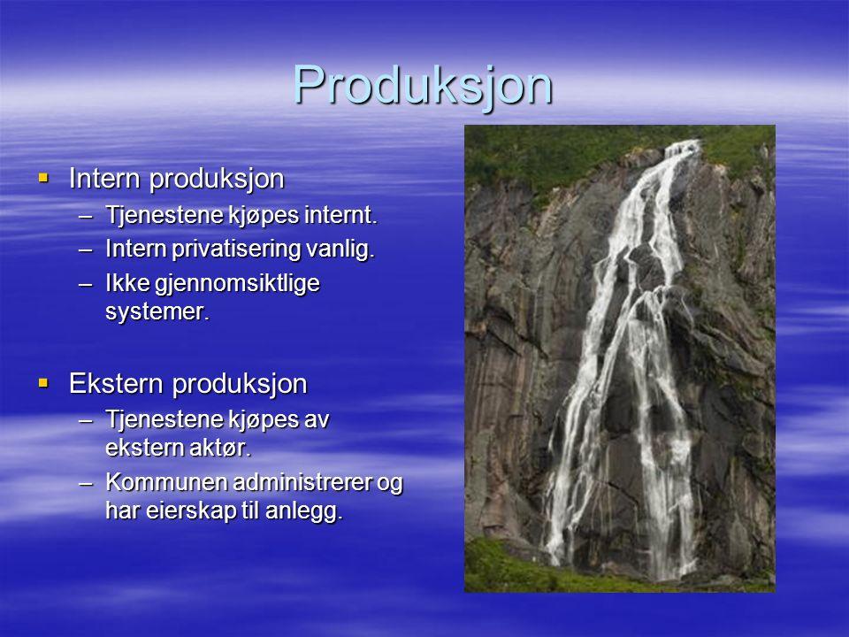 Produksjon  Intern produksjon –Tjenestene kjøpes internt.