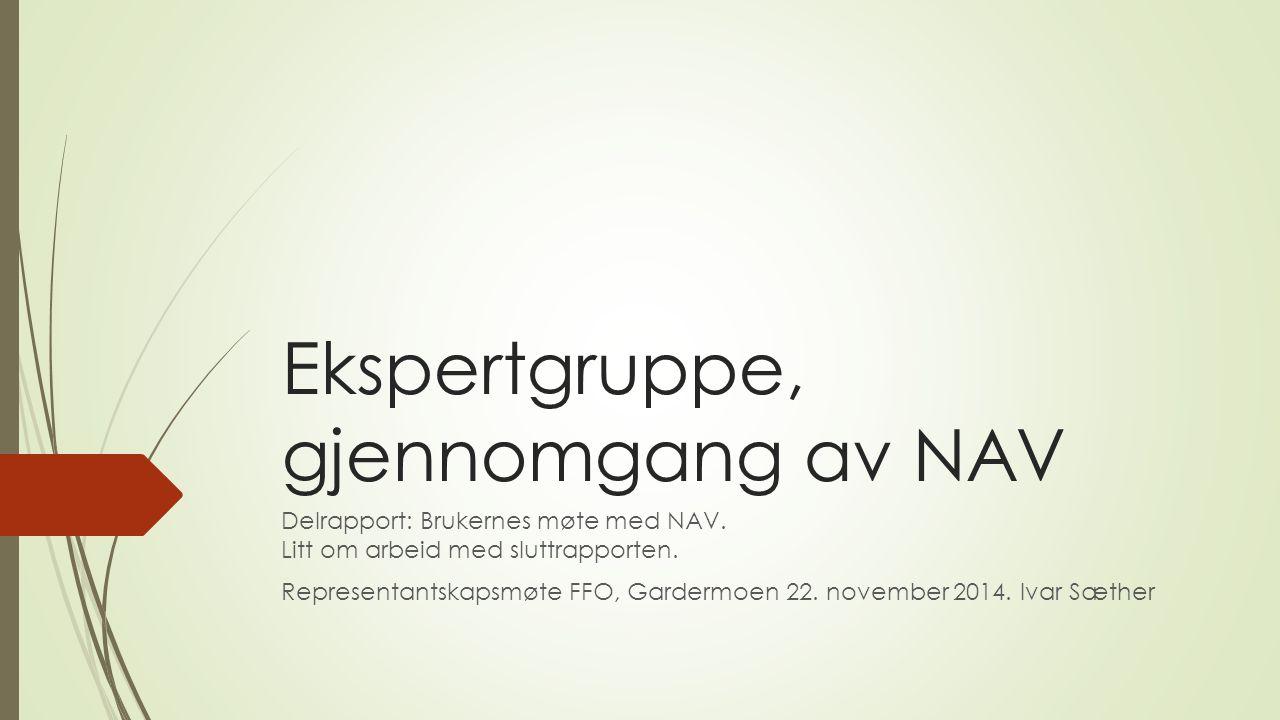 Ekspertgruppe, gjennomgang av NAV Delrapport: Brukernes møte med NAV.