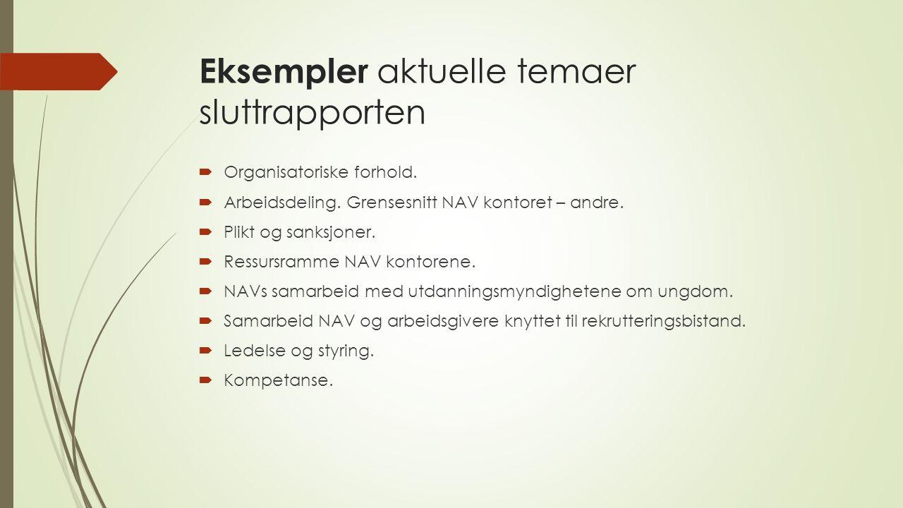 Eksempler aktuelle temaer sluttrapporten  Organisatoriske forhold.  Arbeidsdeling. Grensesnitt NAV kontoret – andre.  Plikt og sanksjoner.  Ressur