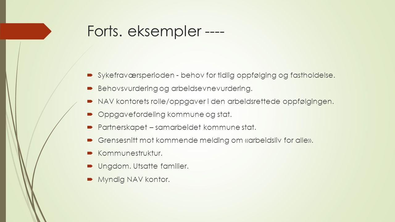 Forts. eksempler ----  Sykefraværsperioden - behov for tidlig oppfølging og fastholdelse.  Behovsvurdering og arbeidsevnevurdering.  NAV kontorets