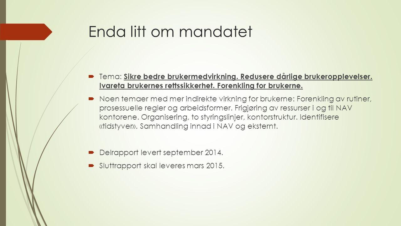 Eksempler aktuelle temaer sluttrapporten  Organisatoriske forhold.