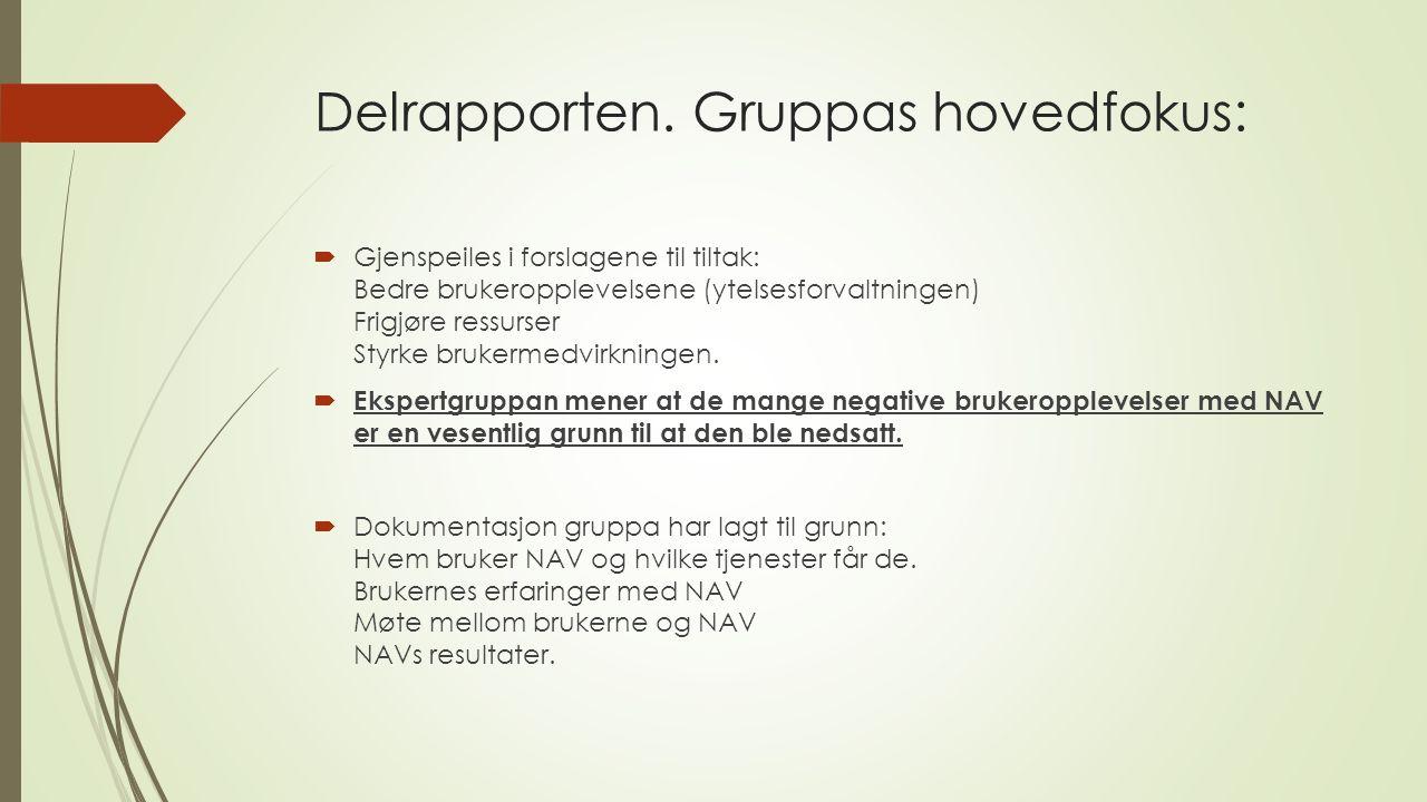 Delrapporten. Gruppas hovedfokus:  Gjenspeiles i forslagene til tiltak: Bedre brukeropplevelsene (ytelsesforvaltningen) Frigjøre ressurser Styrke bru