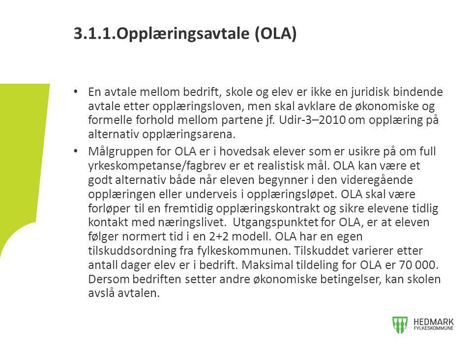 Skolen søker fylkeskommunen om tilskudd for OLA gjennom eget søknadsskjema.