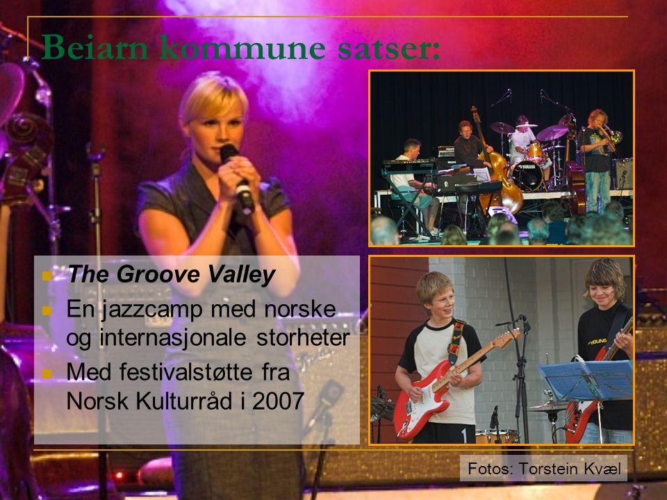 Beiarn kommune satser: The Groove Valley En jazzcamp med norske og internasjonale storheter Med festivalstøtte fra Norsk Kulturråd i 2007 Fotos: Torstein Kvæl