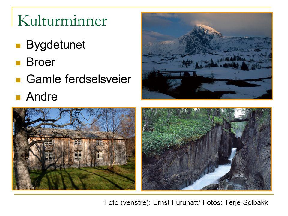 Kulturminner Foto (venstre): Ernst Furuhatt/ Fotos: Terje Solbakk Bygdetunet Broer Gamle ferdselsveier Andre