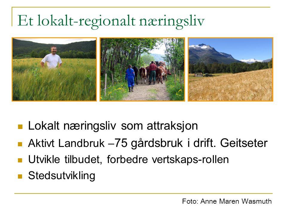 Et lokalt-regionalt næringsliv Lokalt næringsliv som attraksjon Aktivt Landbruk – 75 gårdsbruk i drift. Geitseter Utvikle tilbudet, forbedre vertskaps