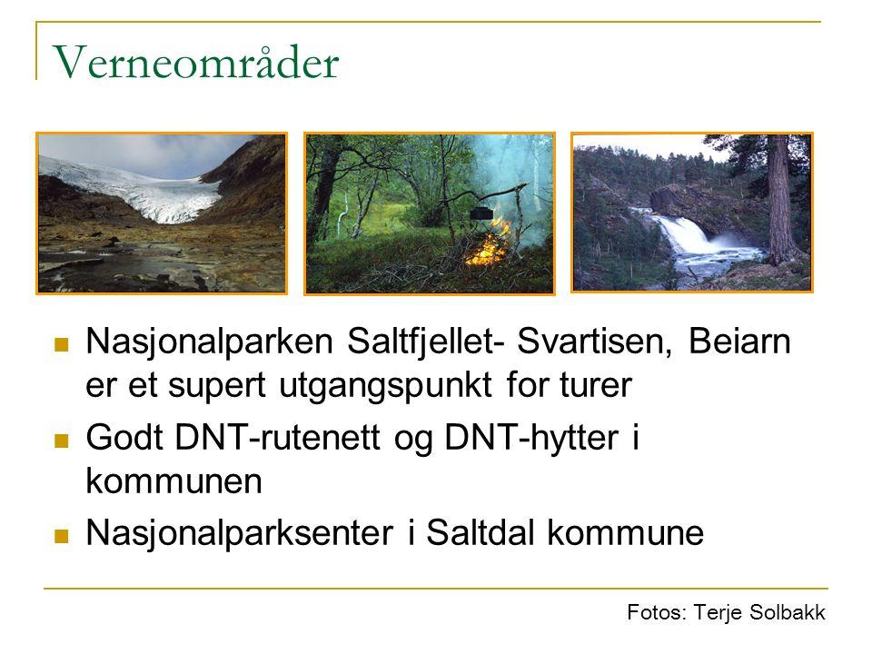 Verneområder Nasjonalparken Saltfjellet- Svartisen, Beiarn er et supert utgangspunkt for turer Godt DNT-rutenett og DNT-hytter i kommunen Nasjonalparksenter i Saltdal kommune Fotos: Terje Solbakk