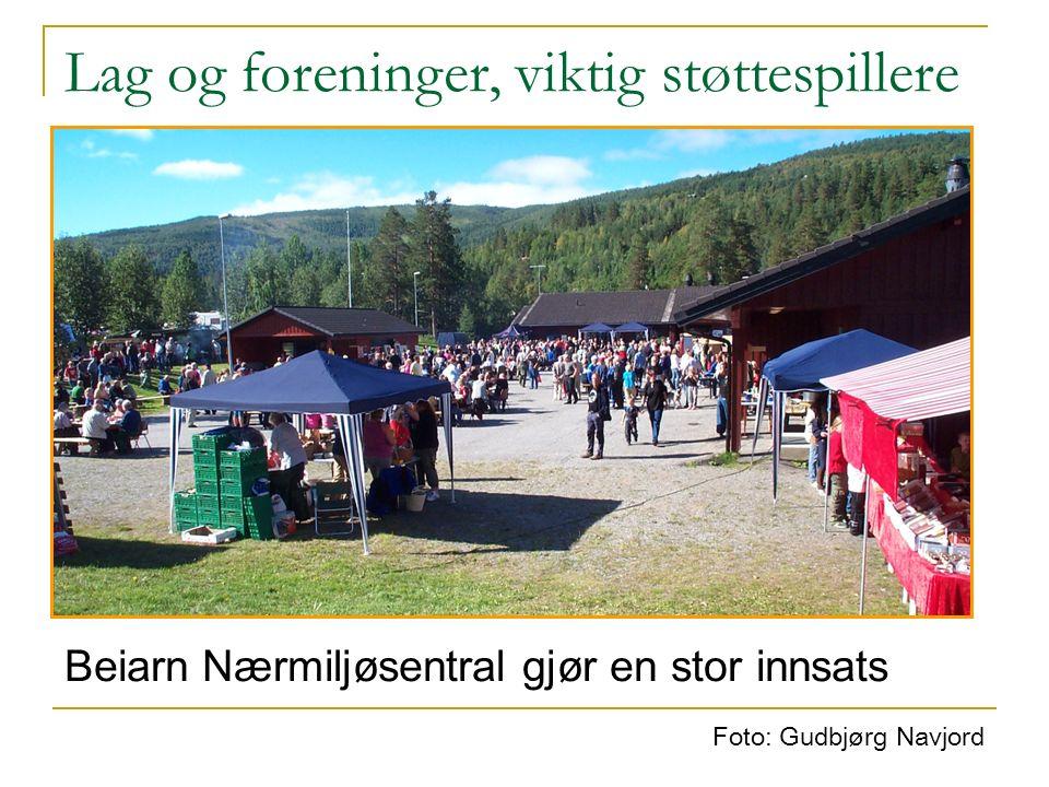 Foto: Gudbjørg Navjord Beiarn Nærmiljøsentral gjør en stor innsats