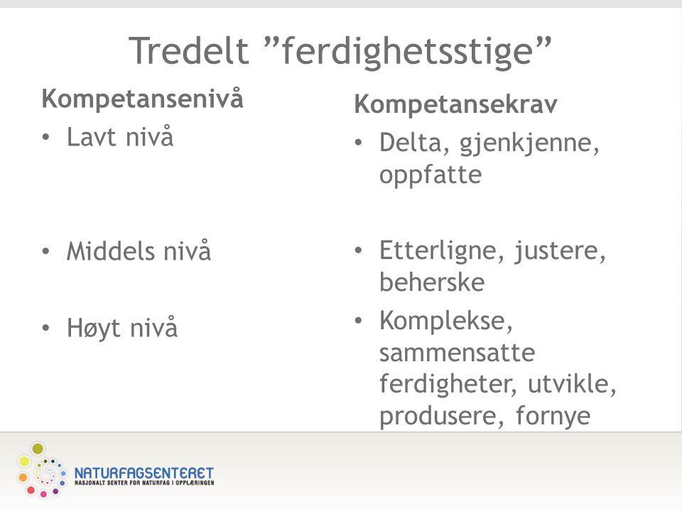 Tredelt ferdighetsstige Kompetansenivå Lavt nivå Middels nivå Høyt nivå Kompetansekrav Delta, gjenkjenne, oppfatte Etterligne, justere, beherske Komplekse, sammensatte ferdigheter, utvikle, produsere, fornye