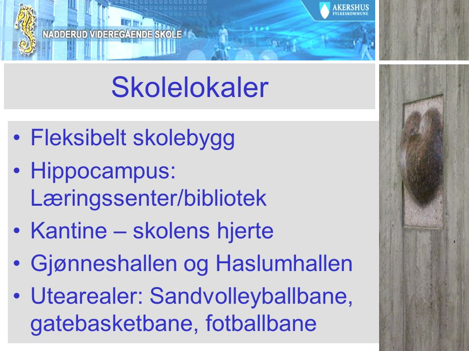Skolelokaler Fleksibelt skolebygg Hippocampus: Læringssenter/bibliotek Kantine – skolens hjerte Gjønneshallen og Haslumhallen Utearealer: Sandvolleyballbane, gatebasketbane, fotballbane