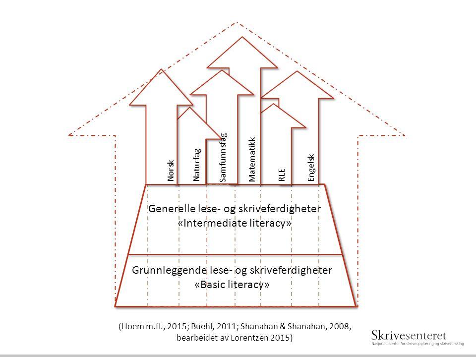 Generelle lese- og skriveferdigheter «Intermediate literacy» Generelle lese- og skriveferdigheter «Intermediate literacy» Grunnleggende lese- og skriv