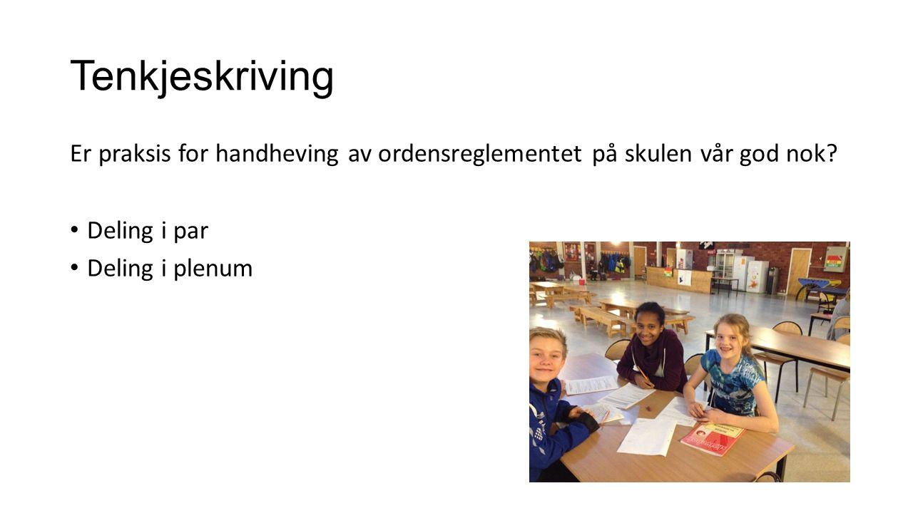 Struktur og rutinar Skal-reglane har vore ein del av praksisen ved VUS sidan byrjinga av 1990-talet.