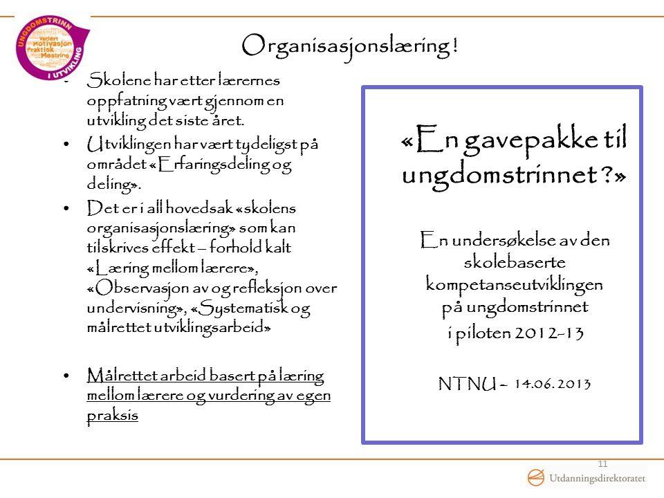 Organisasjonslæring .
