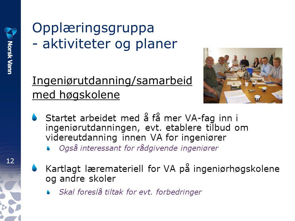 12 Opplæringsgruppa - aktiviteter og planer Ingeniørutdanning/samarbeid med høgskolene Startet arbeidet med å få mer VA-fag inn i ingeniørutdanningen, evt.
