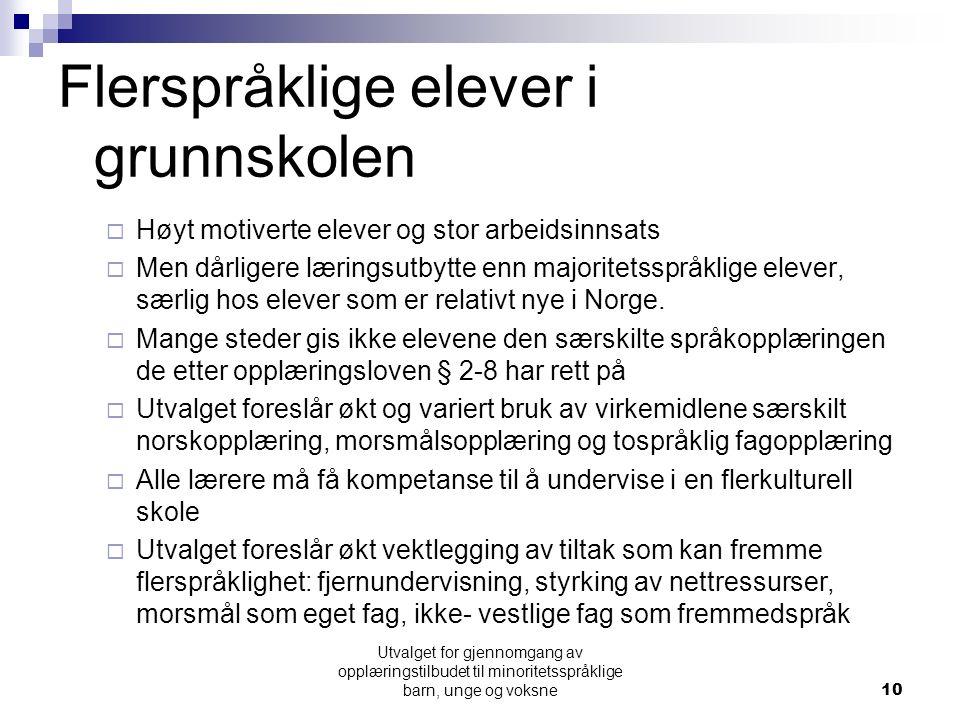 Flerspråklige elever i grunnskolen  Høyt motiverte elever og stor arbeidsinnsats  Men dårligere læringsutbytte enn majoritetsspråklige elever, særlig hos elever som er relativt nye i Norge.
