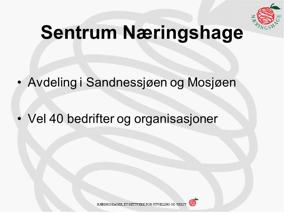 Sentrum Næringshage Avdeling i Sandnessjøen og Mosjøen Vel 40 bedrifter og organisasjoner
