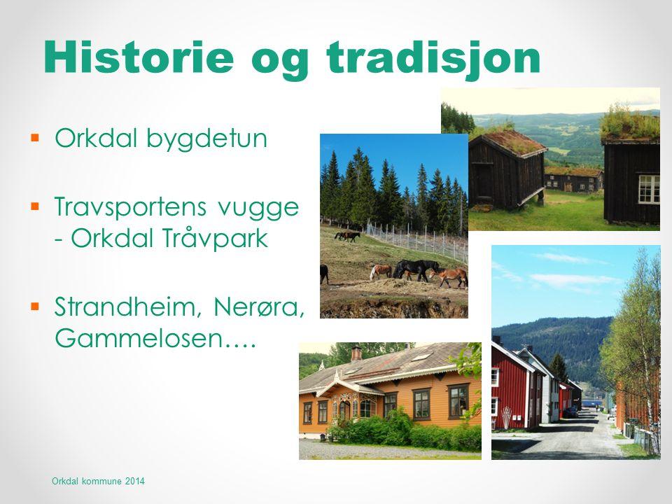 Historie og tradisjon  Orkdal bygdetun  Travsportens vugge - Orkdal Tråvpark  Strandheim, Nerøra, Gammelosen…. Orkdal kommune 2014
