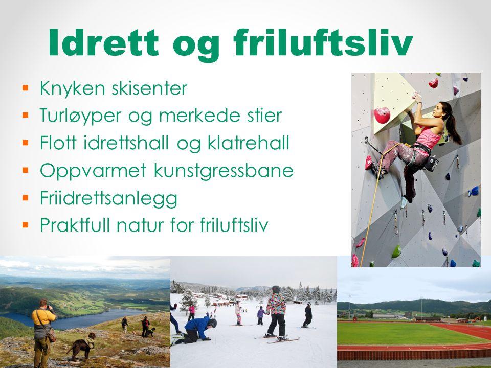 Idrett og friluftsliv  Knyken skisenter  Turløyper og merkede stier  Flott idrettshall og klatrehall  Oppvarmet kunstgressbane  Friidrettsanlegg