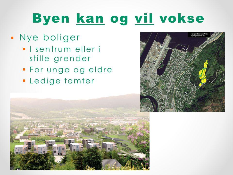 Byen kan og vil vokse Orkdal kommune 2014   Nye boliger   I sentrum eller i stille grender   For unge og eldre   Ledige tomter