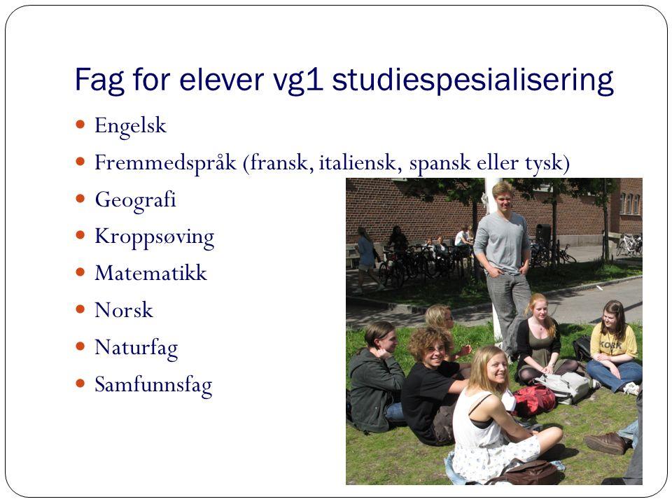 Fag for elever vg1 musikk Engelsk Fremmedspråk (fransk, italiensk, spansk eller tysk) Matematikk Norsk Naturfag Musikk Kor, dans, drama Lytting