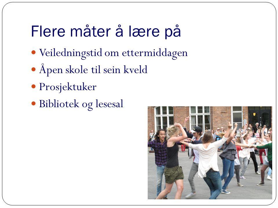 Aktive elever i godt læringsmiljø Elevråd Revy Aktivitetsdager Elevarrangement Konserter