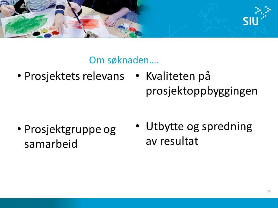 16 Prosjektets relevans Prosjektgruppe og samarbeid Kvaliteten på prosjektoppbyggingen Utbytte og spredning av resultat Om søknaden….