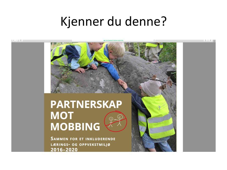 Deltagerne i Beredskapsteamet kan veilede i metodikk på hvordan avdekke, stoppe og forebygge mobbing.