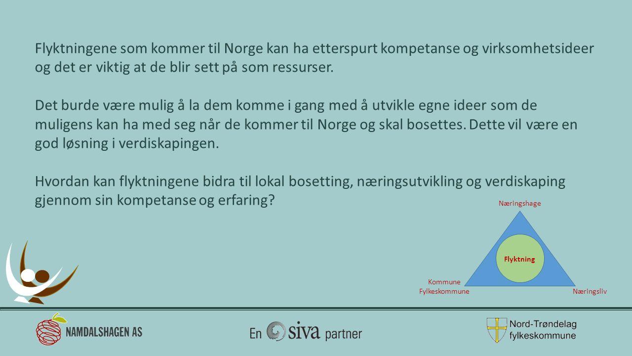 Flyktningene som kommer til Norge kan ha etterspurt kompetanse og virksomhetsideer og det er viktig at de blir sett på som ressurser. Det burde være m