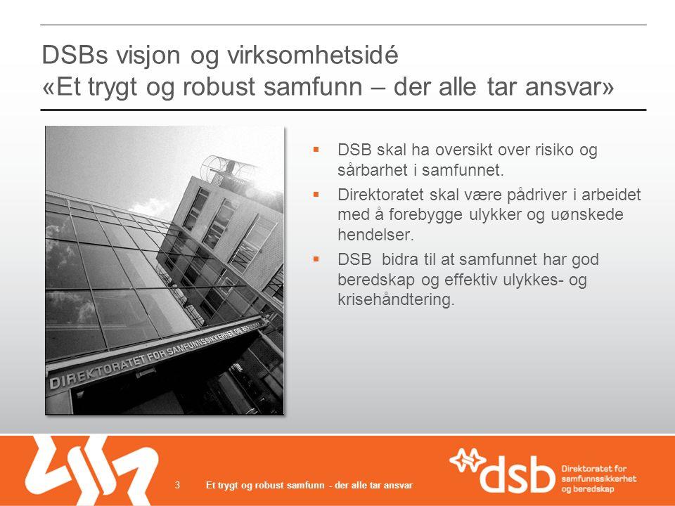DSBs visjon og virksomhetsidé «Et trygt og robust samfunn – der alle tar ansvar»  DSB skal ha oversikt over risiko og sårbarhet i samfunnet.