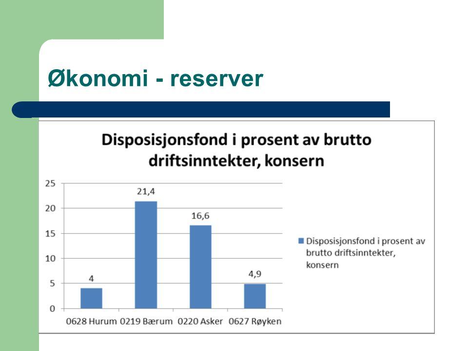 Økonomi - reserver