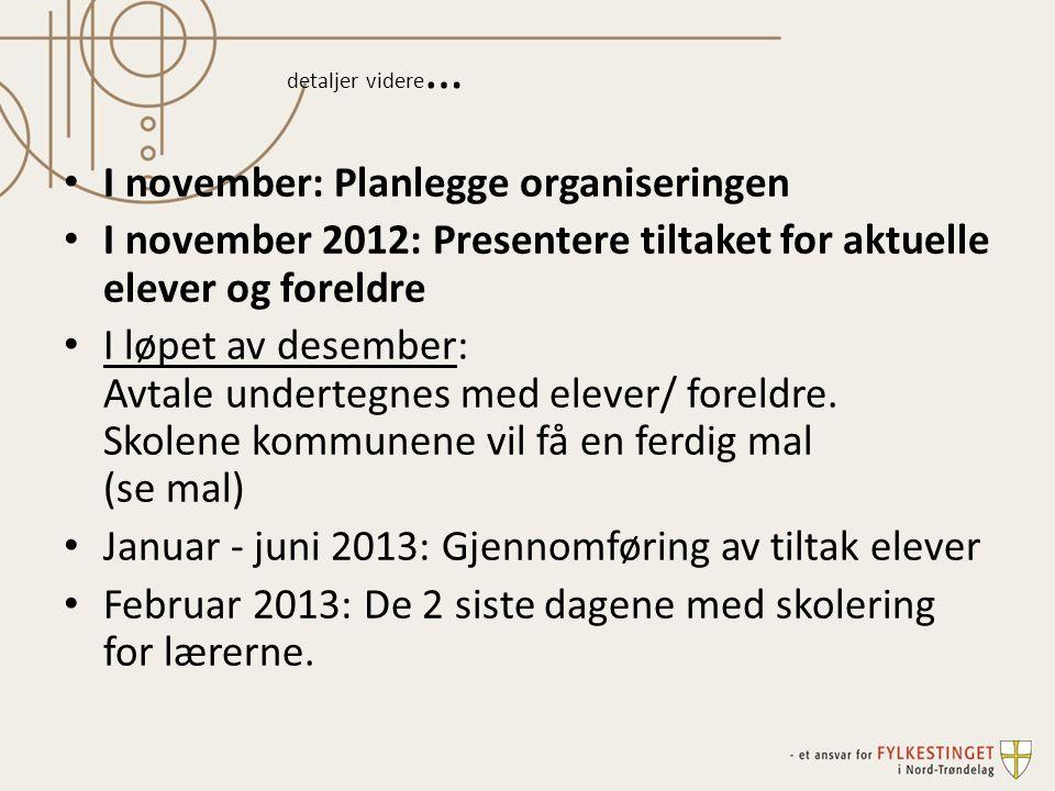 detaljer videre … I november: Planlegge organiseringen I november 2012: Presentere tiltaket for aktuelle elever og foreldre I løpet av desember: Avtale undertegnes med elever/ foreldre.