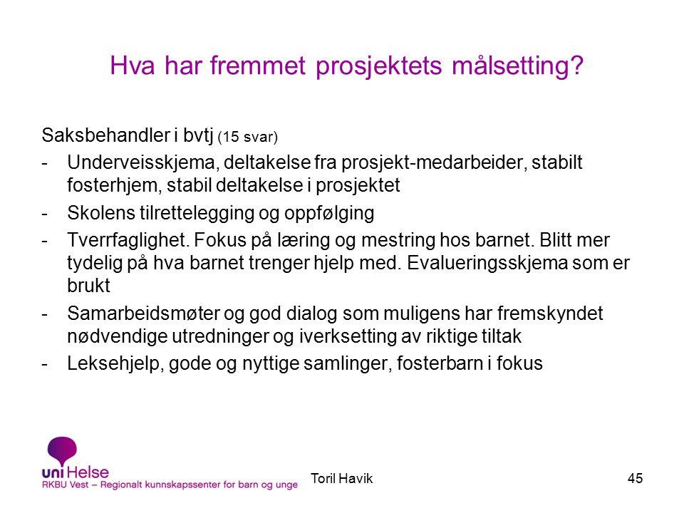 Toril Havik45 Hva har fremmet prosjektets målsetting.