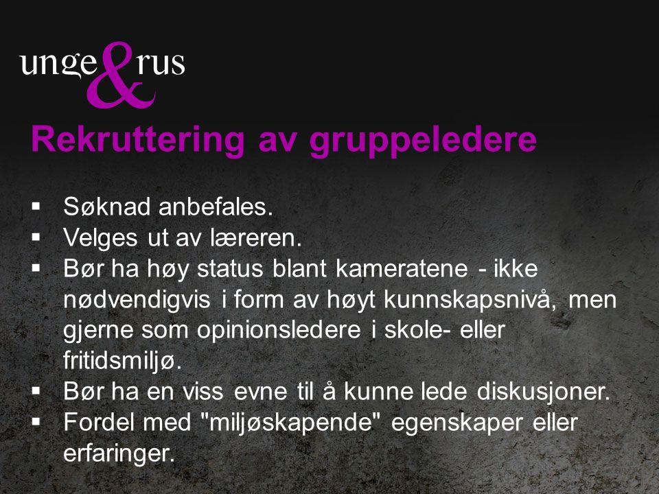 Rekruttering av gruppeledere  Søknad anbefales.  Velges ut av læreren.