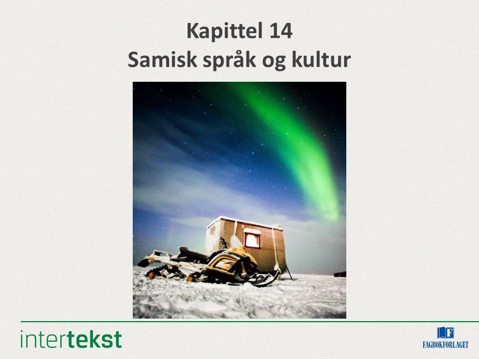 Kapittel 14 Samisk språk og kultur