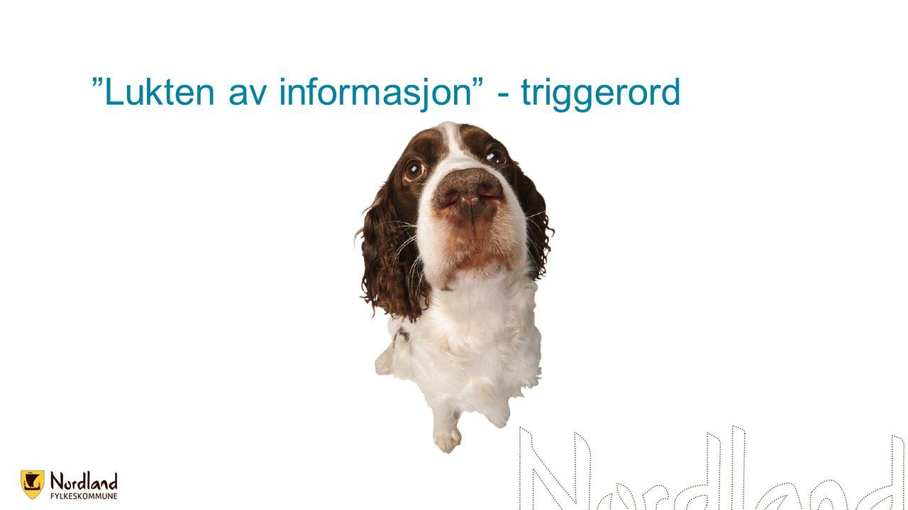 Lukten av informasjon - triggerord