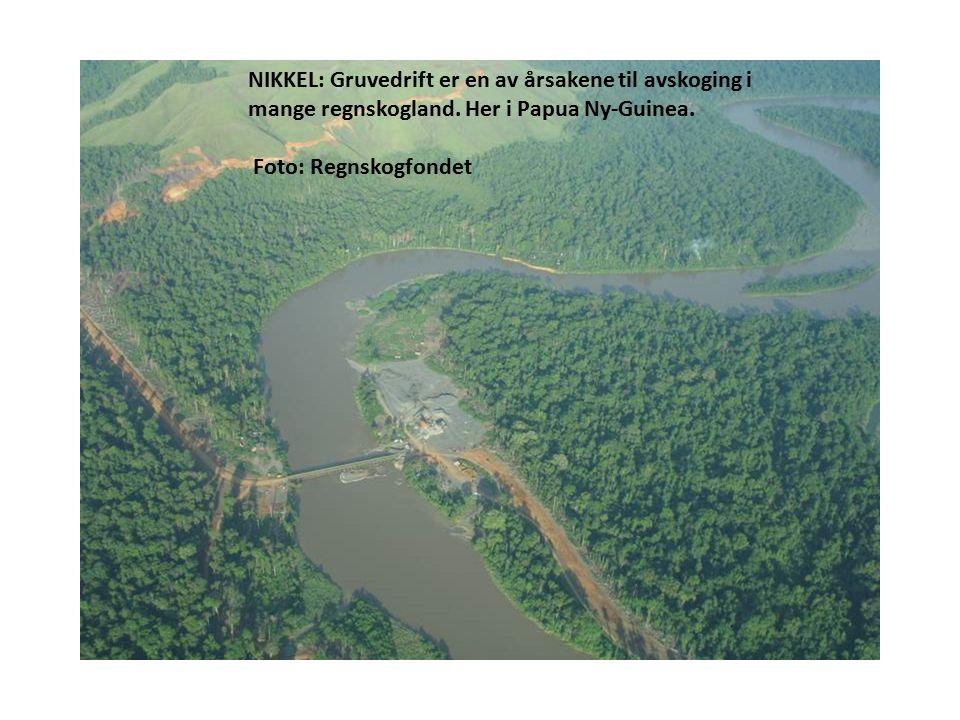 NIKKEL: Gruvedrift er en av årsakene til avskoging i mange regnskogland.