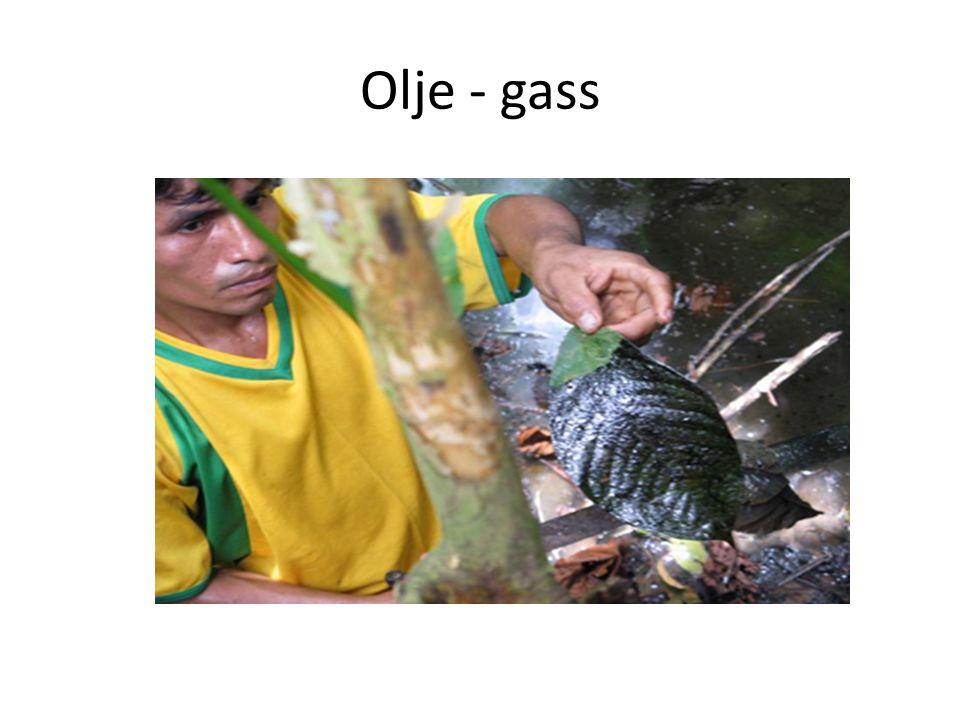 Olje - gass